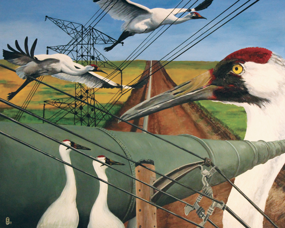 A painting of cranes and the keystone XL pipeline