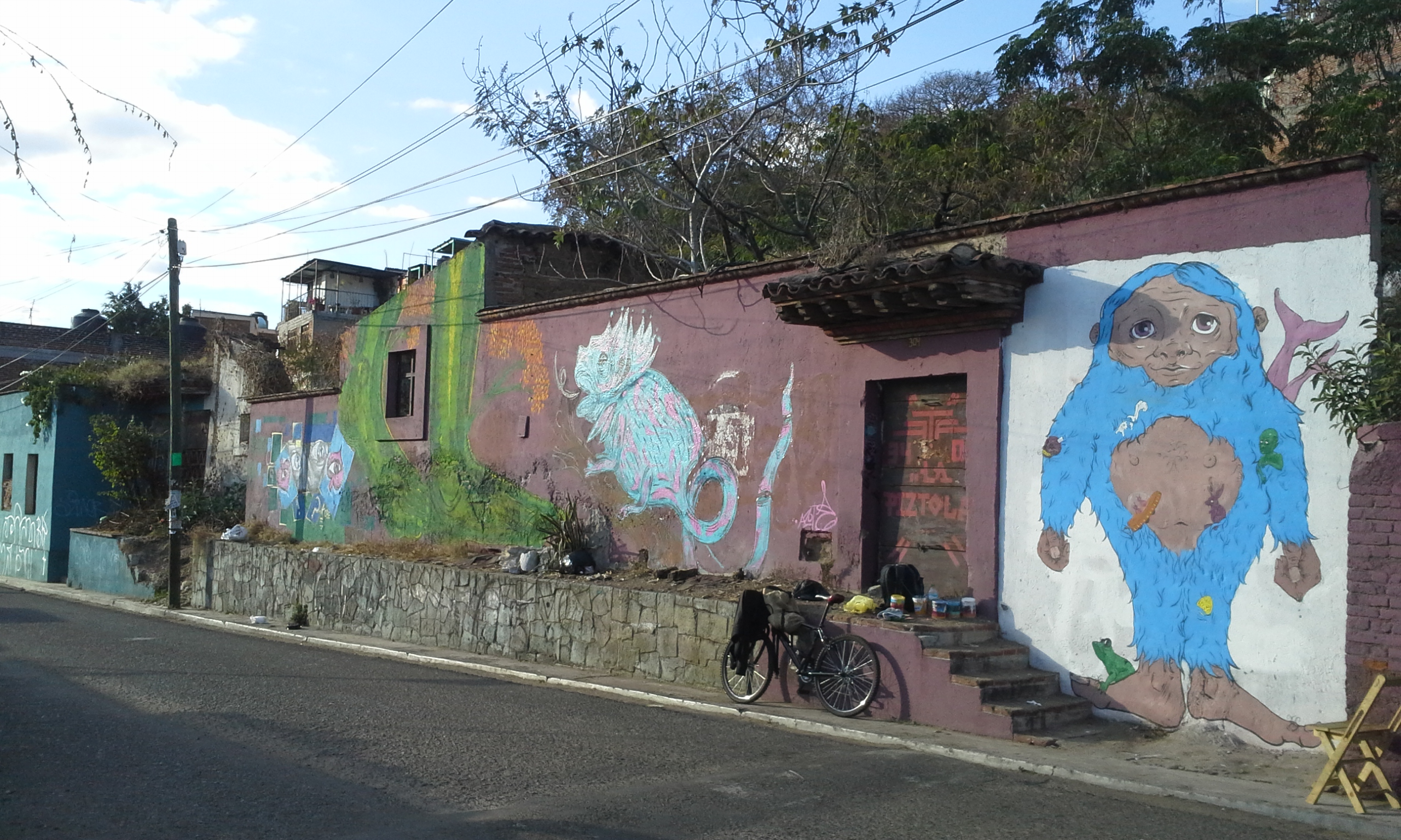 Wall in Oaxaca