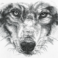 howl_small