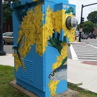 Alewife and Goldenrod Box