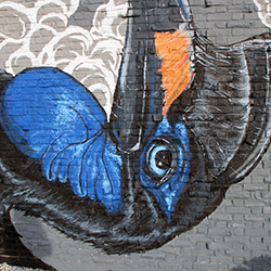 close up of a bird mural