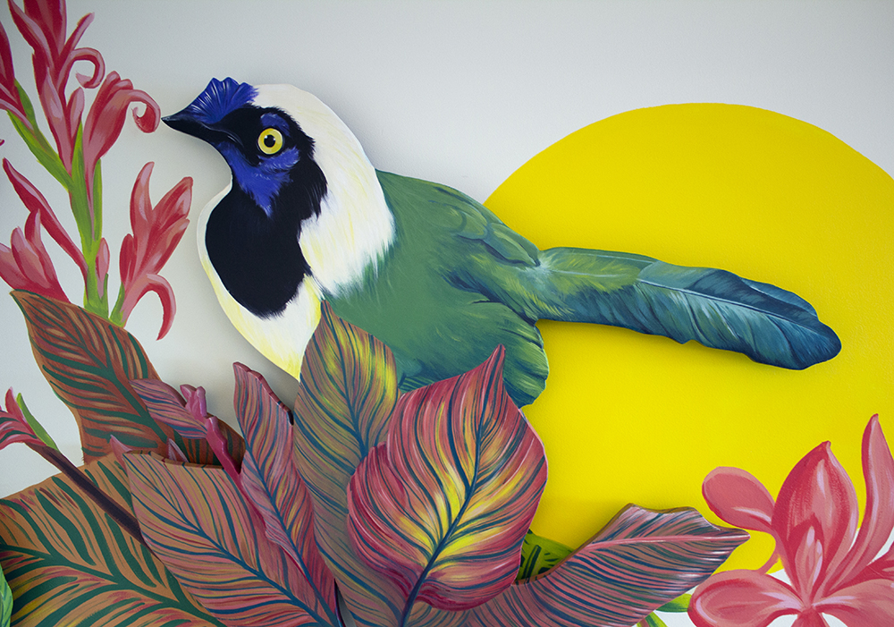 Inca jay mural detail by Sophy Tuttle