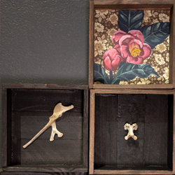 boxes installed on a wall with collage elements