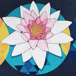 Water lily painted on the esplanade in Boston